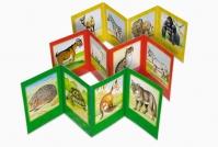 Зоо сликовница ( Шумске животиње )